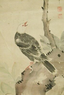 Hanging Scroll Japanese Painting Bird Rock Picture Old Ink Antique Japan b014
