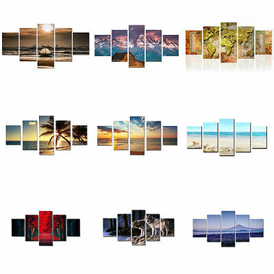 5Pcs Various Pattern Unframed Canvas Print Painting Picture Wall Art Home Decor