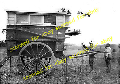 WW1 photo - Horse drawn carrier pigeon coop, France, 1918