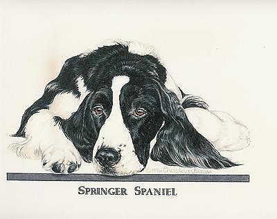English Springer Spaniel Black/White Original Art by Chris Lewis Brown - #525
