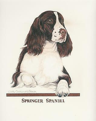 English Springer Spaniel Liver/White Original Art by Chris Lewis Brown - #524