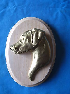 Vizsla 3D Head Study Oval Wall Plaque by Dannyquest
