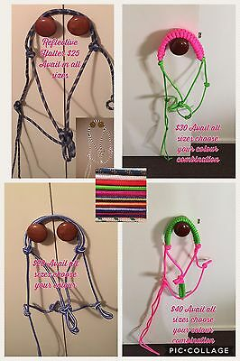 Horse Rope Halter Avail All Sizes Mini Pony Cob Full Warmblood Draft