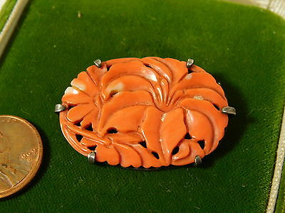 Antique Silver Carved Natural Salmon Coral Lily Flower Brooch Pin 6c 55