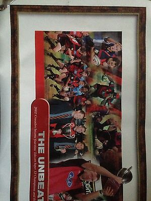 V.Large canterbury crusader super 12 rugby poster 2002 136cmx58cm