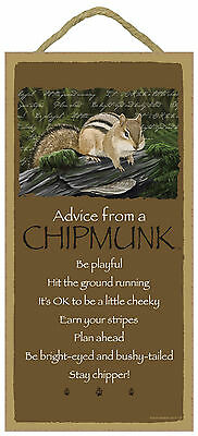 Advice from a Chipmunk Inspirational Wood Small Animal Sign Plaque Made in USA