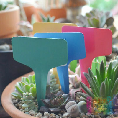 100PCS T-type Plastic Plant Label Flower Tag Marker Nursery Garden Stick 6x10cm