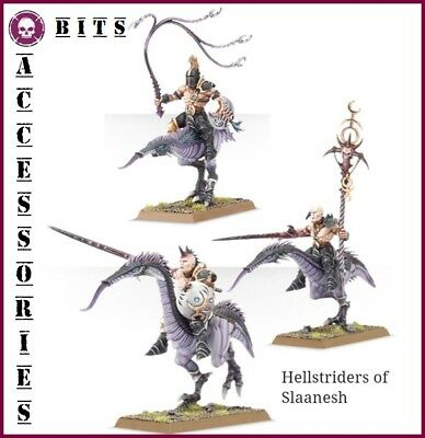 Bits Hosts Of Slaanesh Hellstriders Chaos Warhammer Aos 40K