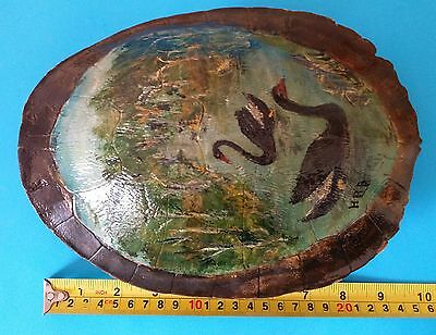 Vintage painted real turtle shell - signed - excellent Christmas present - rare