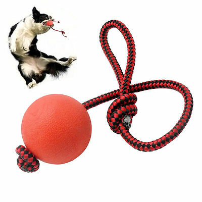 Indestructible Soild Dog Ball with Rope Pet Puppy Chew Play Tooth Cleaning Toys
