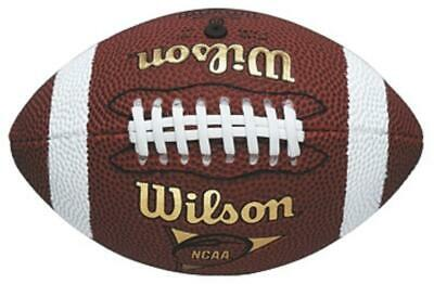 Wilson NFL Micro American Football Indoor/Outdoor Playing Training Practice Ball