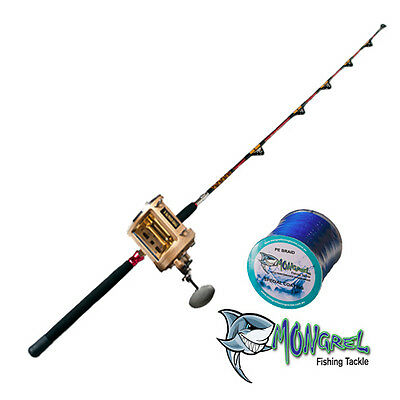 New Game Fishing Rod And Reel Combo Sport Fishing Game Fishing + Bonus Braid
