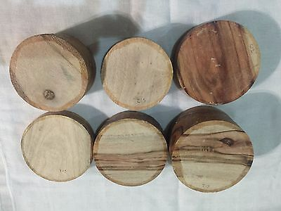 6 Pieces Camphor Laurel  and Silky Oak Turning Bowl Blanks  (set 12)