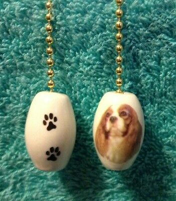 One Cavalier King Charles Dog Fan Pull With Paw Prints On The Back 1""