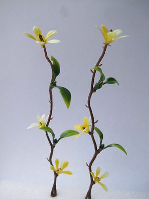 2 Miniature CLEMATIS Yellow Flowers Creeper Climber Plant Doll house Garden F14