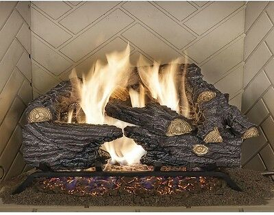 18 in. Vented Natural Gas Fireplace Logs Insert Set Heater Convert Kit Realistic