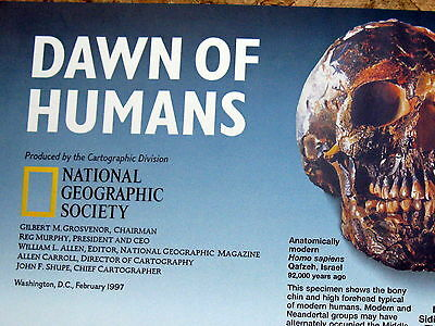 Dawn of Humans / Seeking Our Origins National Geographic Map / Poster Feb 1997