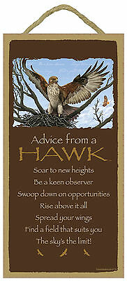 Advice from a Hawk Inspirational Wood Bird Nature Sign Plaque Made in USA