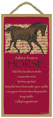 Advice from a Horse Inspirational Wood Equine Cowboy Sign Plaque Made in USA