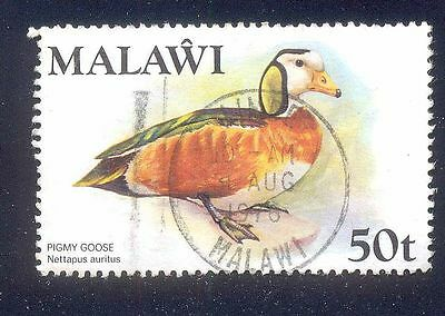 Malawi 50T Used Stamp A14773 Pigmy Goose Bird
