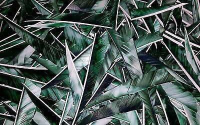 "36 x 4"" Shield Camo GREEN Feathers for traditional arrows / longbow / archery"
