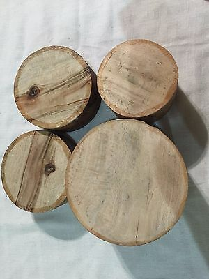 4 Camphor Laurel and Silky Oak lathe Turning Bowl Blanks, NICE COLOR!  (set 23)