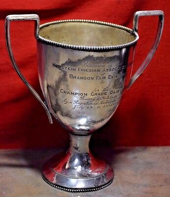 1909 Antique Holstein Friesian Association Trophy Brandon Fair Dairy Cow Canada