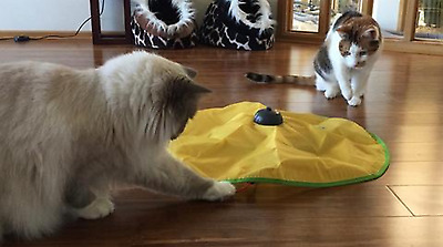 Cat Toy Moving Mouse Undercover Interactive Creative Pet Kitty Activity Play Fun