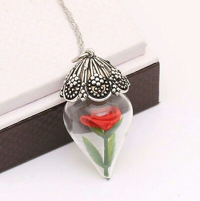 Beauty And The Beast Enchanted Rose Bottle Pendant Necklace Tale as Old as Time