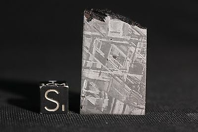 Muonionalusta meteorite etched part slice 24 grams!