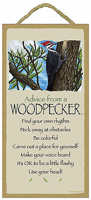 Advice from a Woodpecker Inspirational Wood Nature Bird Sign Plaque Made in USA