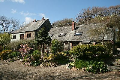 Holiday Cottage nr Crackington Haven, North Cornwall, 1st July for week.
