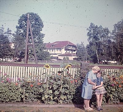 Ostrau Bad Schandau Im Garten 1970  Foto als Dia positive slides diapositives (8