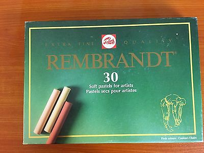 Talens Rembrandt Soft Pastels for Artists 300C30 Flesh Colors Box of 30