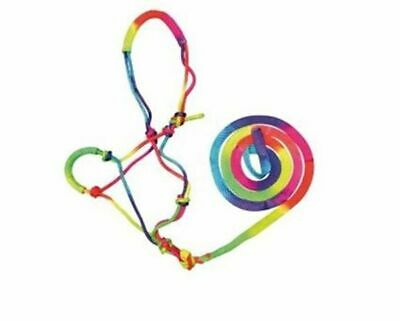 Bambino Knotted Halter and Lead Rainbow PONY (bam2200)