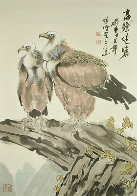 Hanging Scroll Chinese Painting Hawk Asian Picture China Kakejiku Antique b354