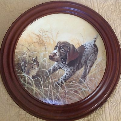 BRADEX Framed Coll Plate FRITZ'S FOLLY German Shorthaired Pointer Field Puppies