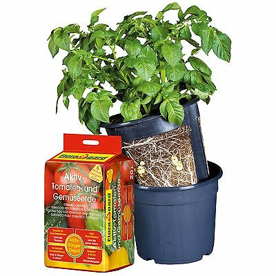 Floragard Potato Pot Set 10 Liter