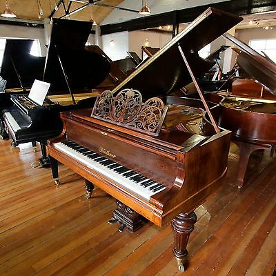 Bluthner Rosewood Baby Grand Piano By Sherwood Phoenix
