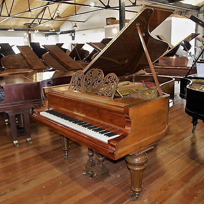 Bluthner Aliquot Rosewood Baby Grand Piano By Sherwood Phoenix