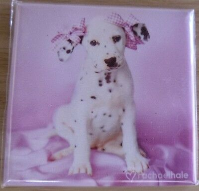 Cute Dalmation Puppy - fridge magnet - brand new - collectable