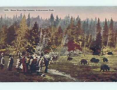 Unused Divided-Back YELLOWSTONE National Park Wyoming WY hk9014