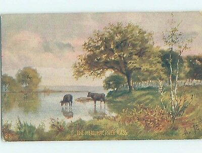 Div-Back POSTCARD FROM Lowell & Lawrence & Haverhill & Newburyport MA HM6094-12