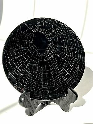 Real Spider Web Preserved In Glass Goth Victorian Ooak Art Taxidermy Decor
