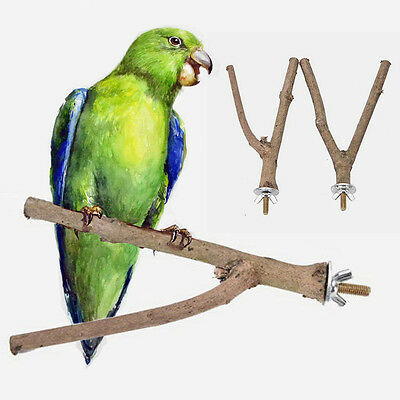 1x Pet Parrot Raw Wood Stand Rack Toy with Y Shape Branch Perches for Bird Cage