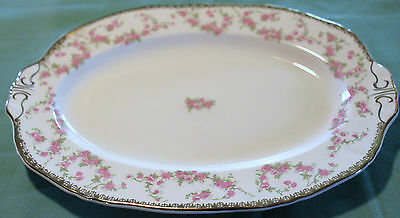 Alfred Meakin Harmony Rose Medium Oval Serving Platter Beautiful Look!!!