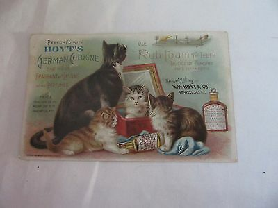 Antique Hoyt's German Cologne  Rubifoam For The Teeth Victorian Trade Car 1894