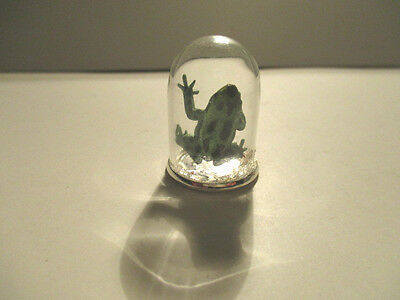 Dolls House Miniature WITCHES FROG IN A GLASS DISPLAY DOME