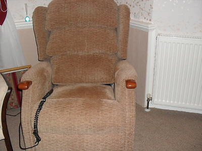 Celebrity Electric Rise Riser Recliner Chair