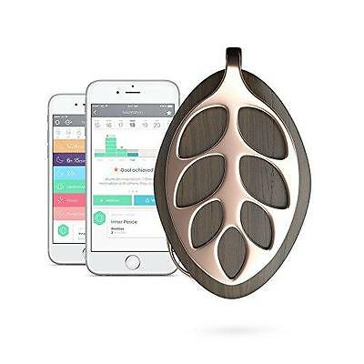 Bellabeat Leaf Nature Health Tracker Smart Jewelry, Rose Gold Edition